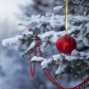 Snow-load-Christmas-trees-ipad-wallpaper-ilikewallpape