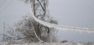 провід зима