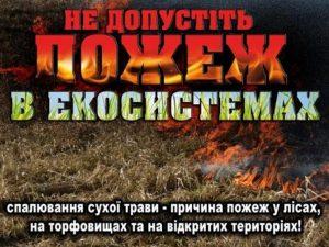 пожежі в еко системах