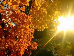 погода_осінь