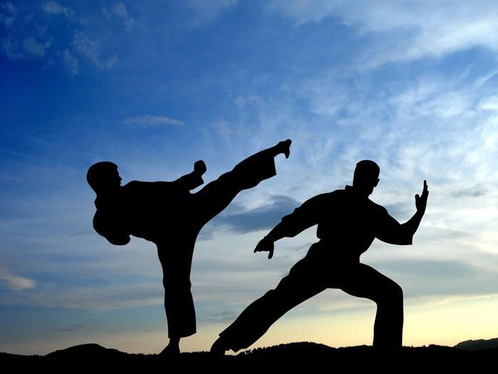 1431165664_karate
