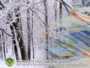 Free picture (Winter Forest ) from https://torange.biz/winter-forest-10505