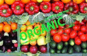 378c6e8-organic