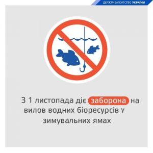 заборона на вилов риби зима