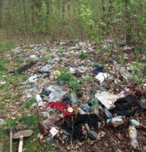 сміття ліс