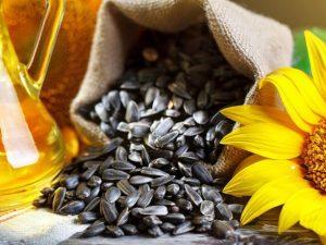 соняшник насіння