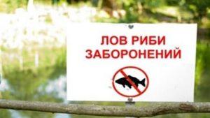 нерестова заборона